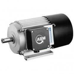 трехфазовый двигатель / монофазо ABM Greiffenberger Antriebstechnik GmbH - трехфазовый двигатель / монофазовый / индукционный /