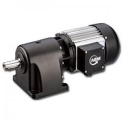 моторедуктор с винтовой зубчатой ABM Greiffenberger Antriebstechnik GmbH - моторедуктор с винтовой зубчатой передачей / 100 - 20
